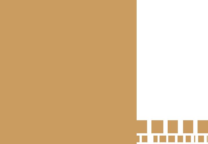Persian Rug- MJ Rug